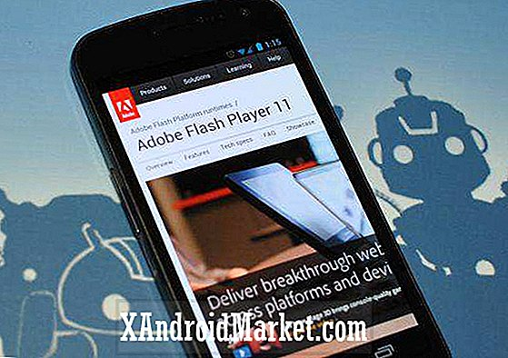 Flash Player 11.1 Update Here;  I tide til Galaxy Nexus ICS OS