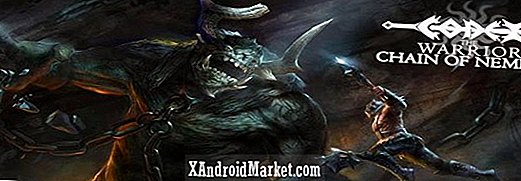 Codex the Warrior er det første Tegra 4 Android spil