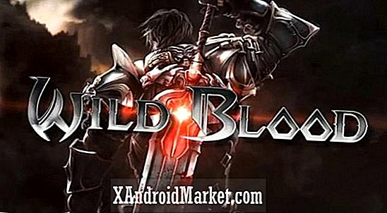 Wild Blood pirate et slash RPG sur Android
