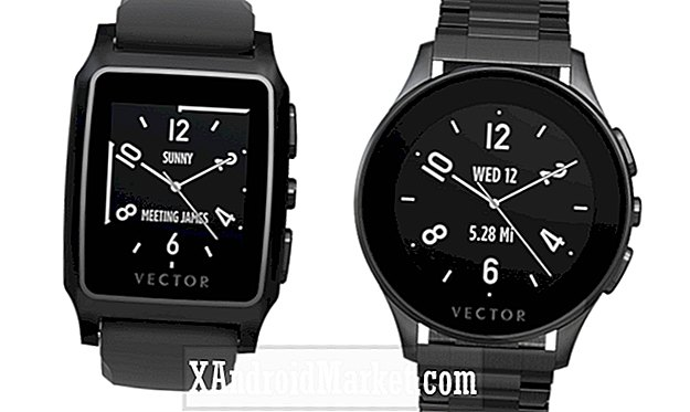 Fitbit neemt smartwatch-maker Vector Watch over
