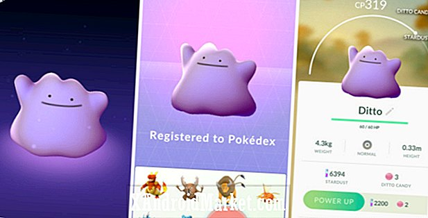 Ditto is nu ontdekt in Pokemon GO